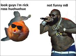 Rick Ross Meme - tropical fish memes on twitter rick ross meme goldfish funny