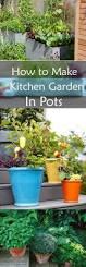 Kitchen Herb Pots How To Make Kitchen Garden In Pots Container Kitchen Garden