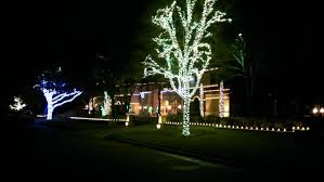 christmas light installation services