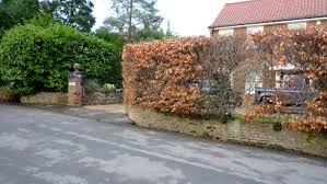 Curved Garden Wall by Curved Walls Really Garden Proud