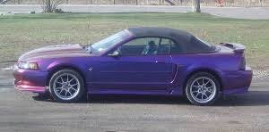 mustang car quotes best car insurance quotes quotes in york car insurance ny