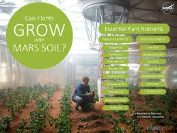 can plants grow with mars soil nasa