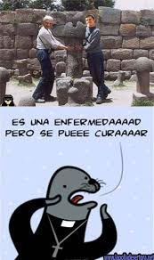 Meme Foca Gay - historia y origen de la foca gay meme lapolladesertora