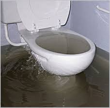 toilet and sink backed up sink and toilet drain service hawaii plumbing services