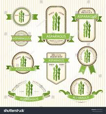 asparagus labels vegetables color package decorations stock vector
