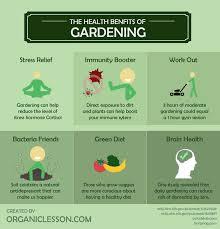 Advantage Of Raised Garden Beds - 6 wonderful health benefits of gardening infographic