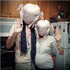 thanksgiving humor turkey as it was never meant to be