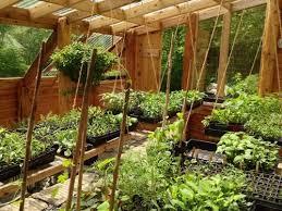 25 unique greenhouse interiors ideas on pinterest greenhouses