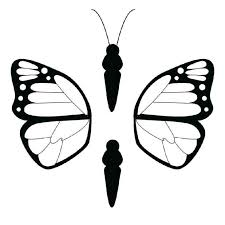 coloring pages butterfly patterns print free butterfly