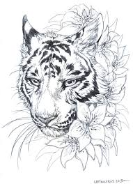 sketch tigerlilies by leptailurus serval on deviantart