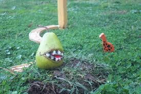Lol Wut Meme - file lolwut pear jpg wikimedia commons