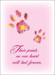 condolence cards pet sympathy cards for veterinarians positive impressions