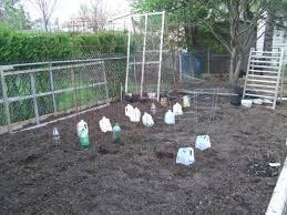 the full circle gardener vertical gardening trellis training