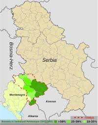 Serbia World Map by