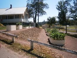 Organic Vegetable Gardening Annette Mcfarlane by Nambour Community Gardens
