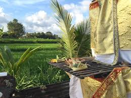 suly vegetarian resort u0026 spa ubud indonesia booking com