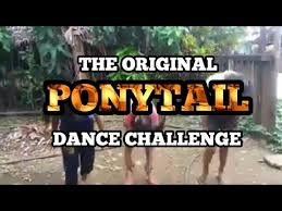 The Original Challenge The Original Ponytail Challenge