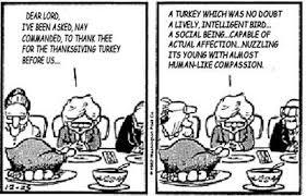 padre steve s reasons for thanksgiving in 2013 padre steve s