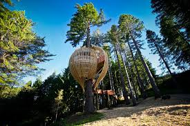 best tree houses best tree houses ever design of your house u2013 its good idea for