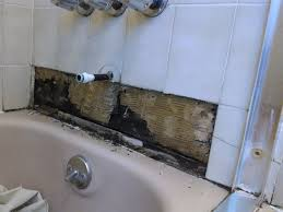 Black Mould In Bathroom Dangerous Plain Bathroom Tile Mold To Clean From Your Ceiling With
