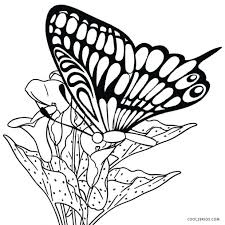 printable coloring pictures butterflies unique pages book gallery