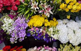Wholesale Flowers Miami Miami Flower Market Is Now Offering Wholesale Delivery To The Public