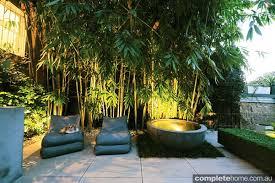 small city garden ideas beautiful courtyard designs a beautiful garden in an inner city terrace entertaining