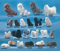 different toy poodle cuts black toy poodle cuts merry dog life photo blog