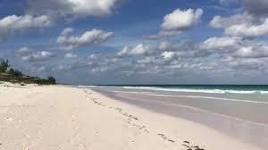 pink sands beach harbour island bahamas youtube