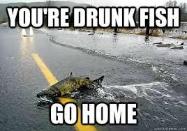 Funny Fish Memes - drunk memes funny fishing memes best of the funny meme