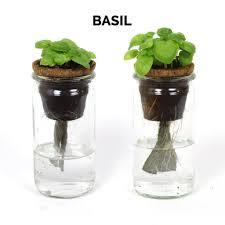 garden seed starter diy kit u2013 9 pack herbs u0026 vegetables u2013 modernsprout