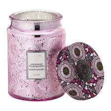 Plum Home Decor Buy Voluspa Japonica Limited Edition Candle Japanese Plum Bloom