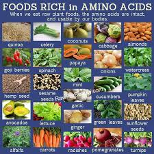 foods rich in amino acids health images