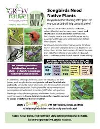 planting native grass seed new u201cdid you know u201d grow native fact sheet songbirds need native