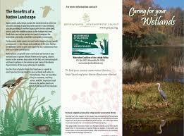 native plants in pennsylvania water resource brochures pennsylvania environmental council