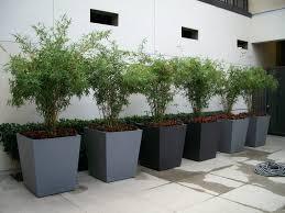 planters extra large plastic tree pots indoor planter planters