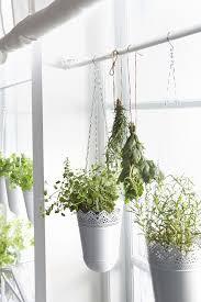 36 best blómapottar images on pinterest ikea plants and indoor