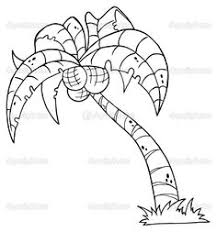 coloring pictures of a palm tree palm tree coloring pages coconut palm coloring page jpg forests