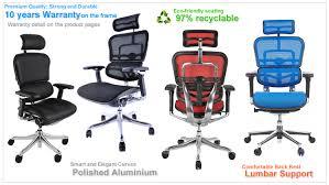 Net Chair Ergohuman Enjoy Mirus And Ergohuman Plus Office Chairs The