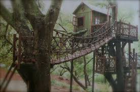 trend decoration tree house blueprints for tiny best houses