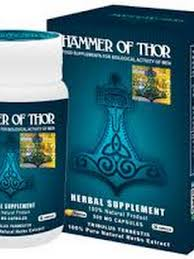 hammer of thor google