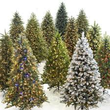 Outdoor Christmas Decorations Tulsa Ok by Choosing A Christmas Tree