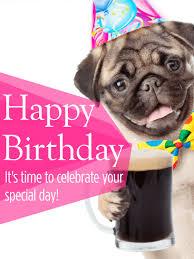 animal birthday cards for everyone birthday u0026 greeting cards by