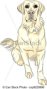 clip art vector of vector color sketch dog breed white labrador
