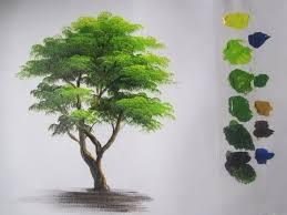 best 25 trees ideas on