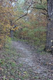 park trails missouri state parks hikers and bicyclists will travel the hilly terrain through a woodland of loess glacial till soils dominated by white oak and shagbark hickory