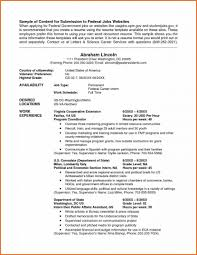 government resume template saneme