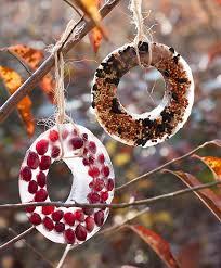 diy birdseed ornaments hello glow
