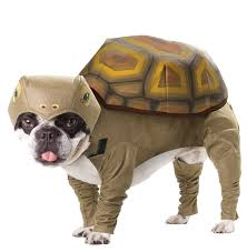 anniescostumes com pet costumes costumes for pets dog costumes