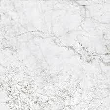 conca verdiana bone thru porcelain indoor outdoor floor